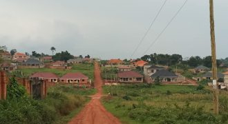 Gayaza-Nakwero Estate just behind Canansite estate